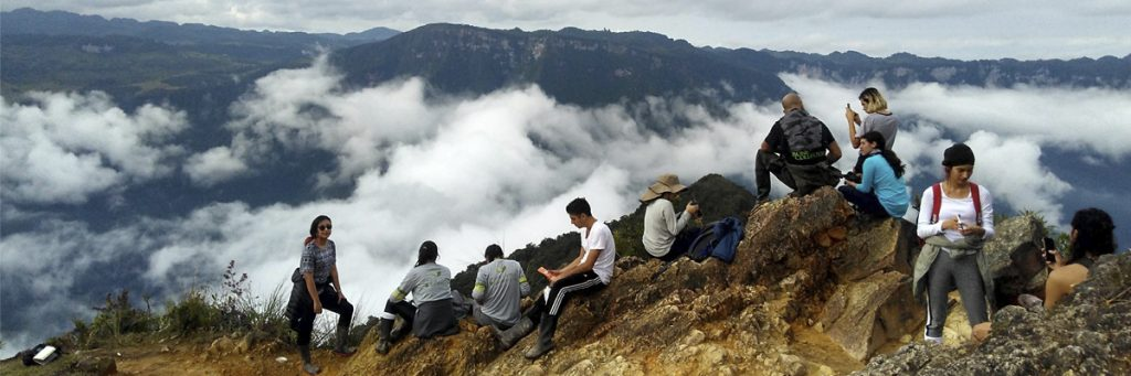 Photo of ecology students in field work in Colombian landscapes