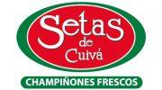 Logo Setas de Cuivá