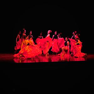 Fotografía de grupo experimental de danza de la Universidad CES