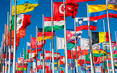 Flags of all the countries of the world, where you can carry out your academic exchange