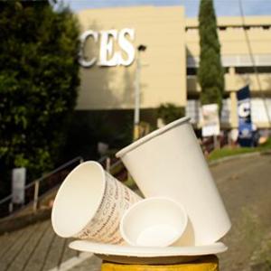 Fotografía de vasos y platos desechables