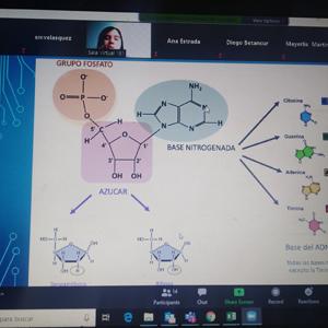 Captura de pantalla de tutores CES ayudando a otros estudiantes