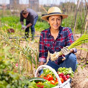 Mujer recolectando vegetales con una canasta