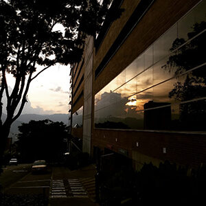 college photography in a sunset