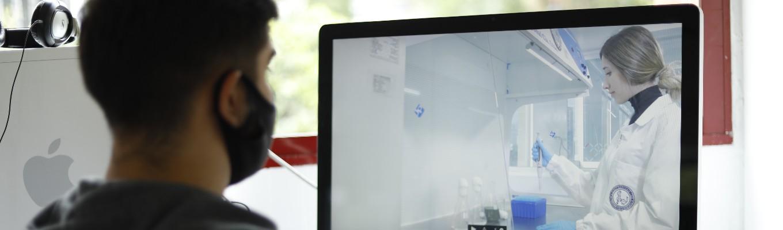 imagen de una persona viendo el computador